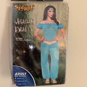 Arabian Beauty Halloween costume
